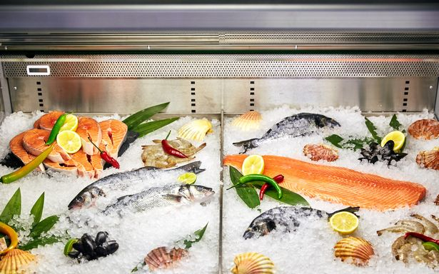 C:\Users\hp\Desktop\0_seafood-in-the-freezer-with-ice1.jpg