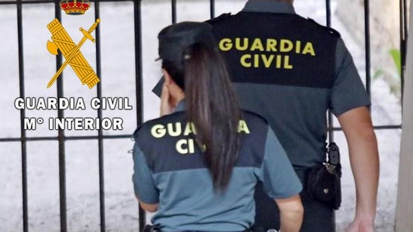 La Guardia Civil ha logrado detener al ladrón.