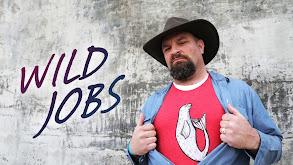 Wild Jobs thumbnail