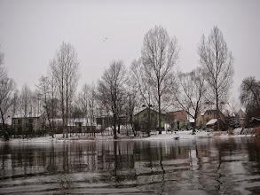 Photo: Bobrowniki