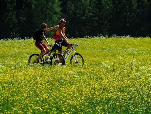 In Mountain bike in mezzo ai fiori di Giorgio Lucca