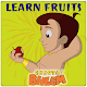Learn Fruits with Bheem (game)