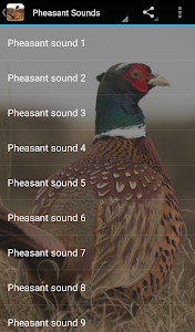 Pheasant Sounds screenshot 1