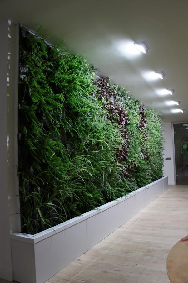 vista de perfil del jardín vertical de weleda