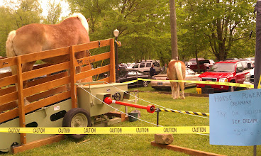Photo: Horsepowered ice cream! This horse walks on the treadmill, and....
