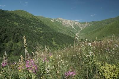 Der Bergrücken am Zagaro Pass ist gut 3100 m hoch.