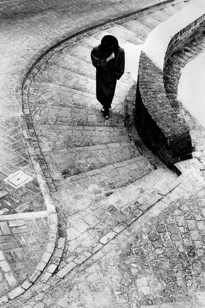 Su per le antiche scale di alberto raffaeli