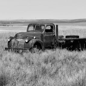 by Terry Oviatt - Transportation Automobiles