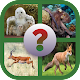 Guess the Animal for PC-Windows 7,8,10 and Mac