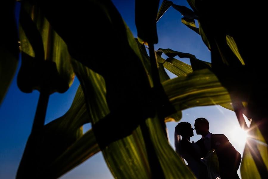 Wedding photographer Antoine Rassart (twane). Photo of 23.01.2015