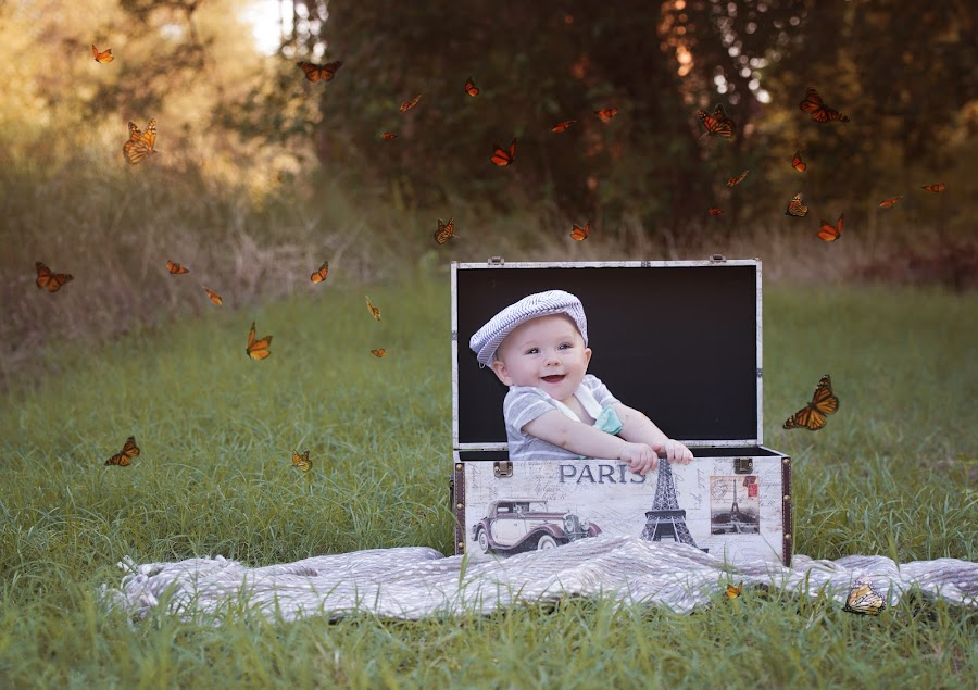 whimsey by Carole Brown - Babies & Children Child Portraits ( blue eyed boy, butterflies, paris box, whimsey, 6 month old boy )