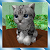Cute Pocket Cat 3D - Part 2 file APK Free for PC, smart TV Download
