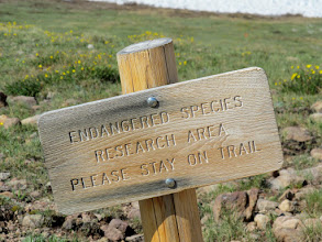 Photo: Endangered Species Research Area Please Stay on Trail