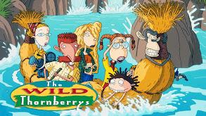 The Wild Thornberrys thumbnail