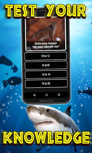 Animals Quiz - Wild Creatures Educational Trivia  screenshots EasyGameCheats.pro 2