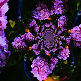 Pink Flurry  by Audra Lowrey Crall - Abstract Patterns ( flowers, kaleidoscope, nature, hydrangea, pink flower, digital art )