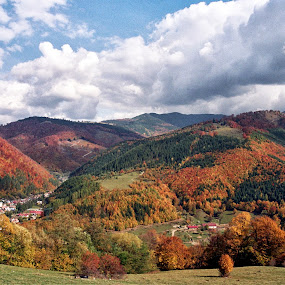 Over the Hills by Adrian Popescu - Landscapes Mountains & Hills ( film, hills, autumn, fall, forest, analogue )