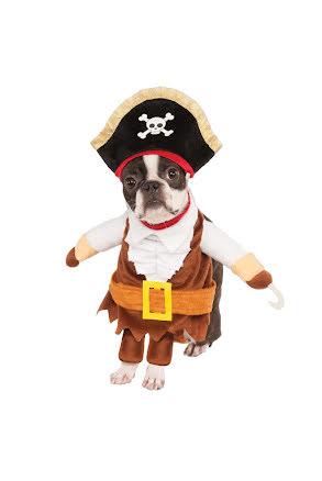 Hunddräkt, Pirat