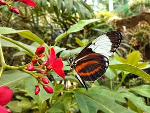 Photo: Butterfly Hall #SpringBreak