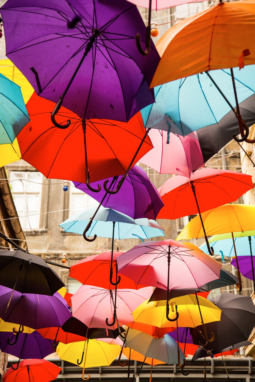 An array of brightly colored umbrellas in purple, orange, light blue, teal yellow, and red, hanging from ropes with sun shining through.