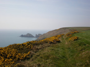 Photo: From Broad Haven to Solva (Dinas Fach)