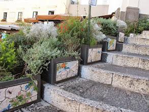 Photo: It.s5ITL120-141008Capri, ville, escalier, jardinières décorées de céramiques au lézard bleu  IMG_5639