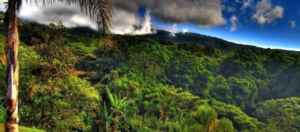 Região Central de Porto Rico
