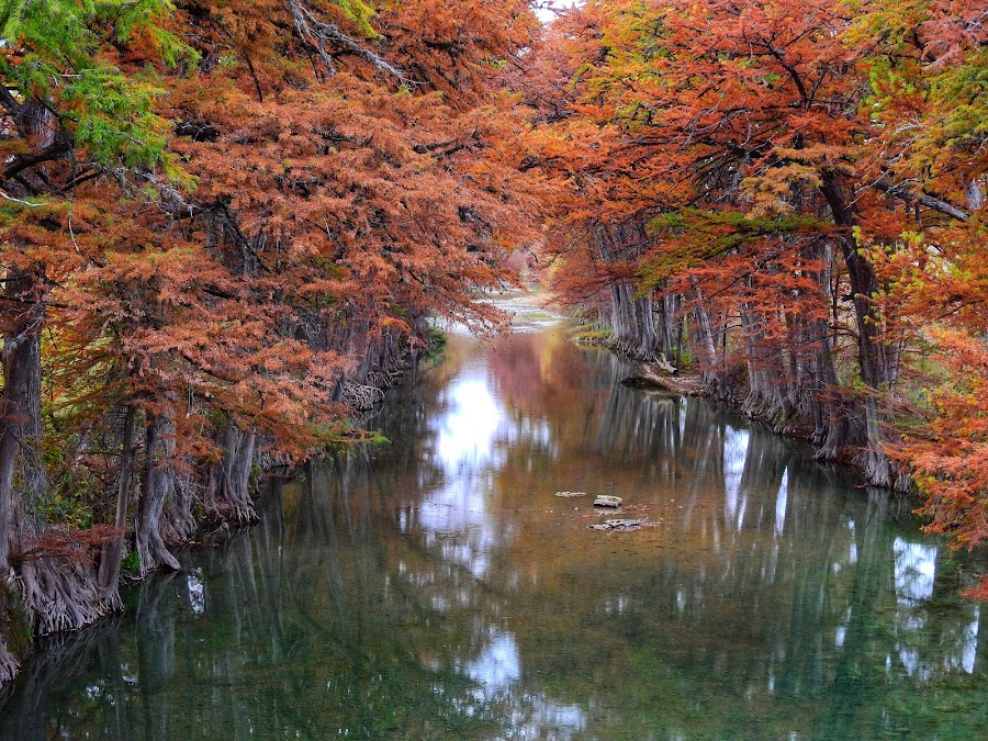 Fall at Hunters Crossing by Cathy Hood - Landscapes Waterscapes