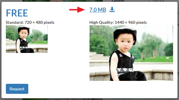Link showing a video file is ready for download