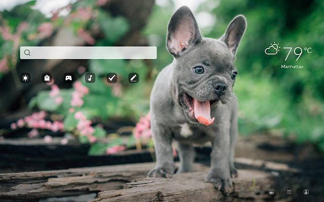 My French Bulldog HD Dog & Puppy Wallpapers