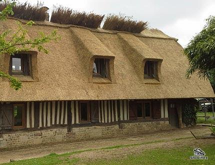 Podłużny dom z muru pruskiego z dachem trzcinowym i dużymi oknami dachowymi
