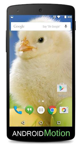 玩個人化App|Easter Background免費|APP試玩