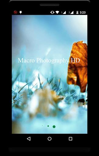 Macro Photography Backgrounds