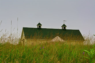 Photo: Ludholm Farm Reserve, Wells, Maine