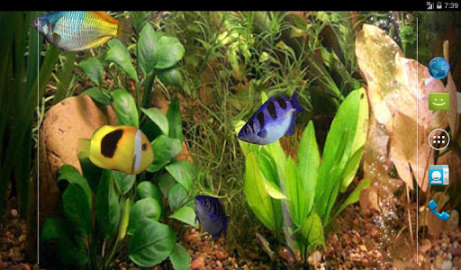 Aqua 3D Pro Live Wallpaper screenshot
