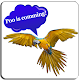 Bird translator (prank) (app)
