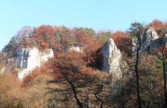 Photo: BB040380 Ojcow - kolory jesieni