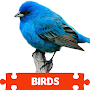 Bird Puzzles APK icon