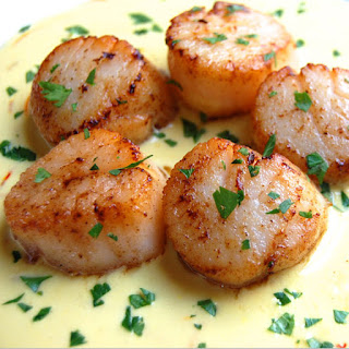 Seared Scallops with Saffron Sauce.
