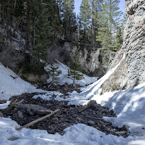 Donut falls river by Jason Murray - Landscapes Forests ( canyon, snow, river, snowy, landscape,  )
