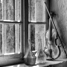 Enjoying The Sunshine At The Window Bench by Marco Bertamé - Black & White Objects & Still Life ( window bench, violin, glass, string, bottles, still life, wood, window, window sill )