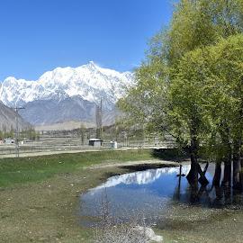 Hopar Valley by Waqar Afzal - Landscapes Mountains & Hills ( #hunza#gilgit#baltistan#mountain#hopar#valley#scenic#beauty#pakistan#nature )