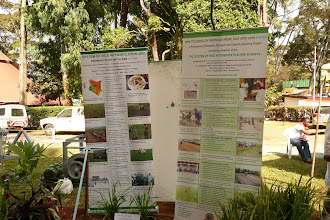 Photo: SRI display which was included in the JKUAT main stand at the Nairobi International Trade Fair (Sept. 27- Oct.  2, 2010) [Photo Courtesy of Bancy Mati]