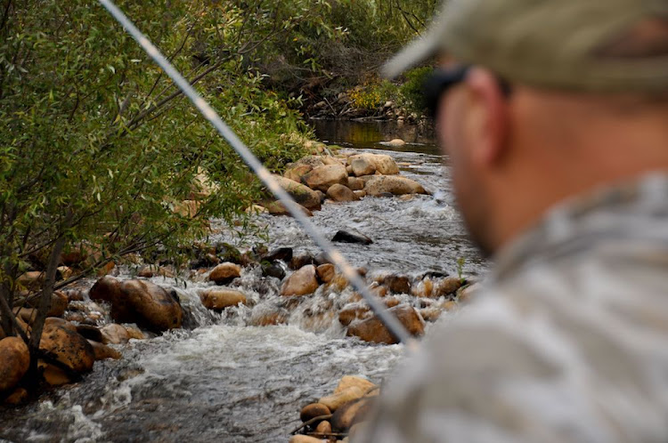 The rivers in the Breedekloof offer some of the Cape's finest wilderness fly fishing.