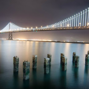 Bay Bridge by Martha Irvin - Buildings & Architecture Bridges & Suspended Structures (  )