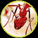 Tap n Crush Ant Smasher Kids
