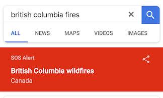 Google Search SOS alert.