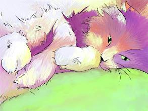 Photo: Miss Kittiara, a kitty I miss sometimes