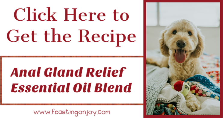 Click Here to Get the Anal Gland Relief Essential Oil Blend Recipe | Feasting On Joy