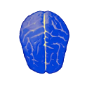 Logical test - IQ icon